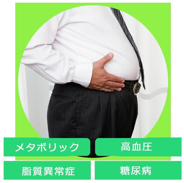 メタボリック・高血圧・脂質異常症